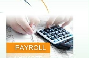 Web-Based Payroll services &Client-Server Payroll software integration